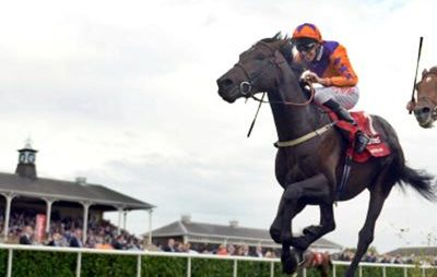 Best Horse Racing Tipsters – Most Profitable 2020